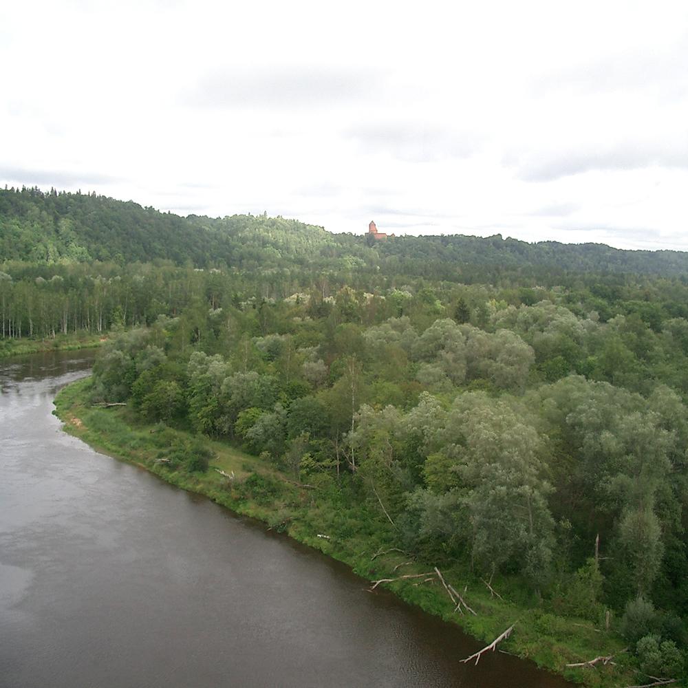 Gauge river