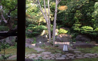 さやの湯処 枯山水の苔庭